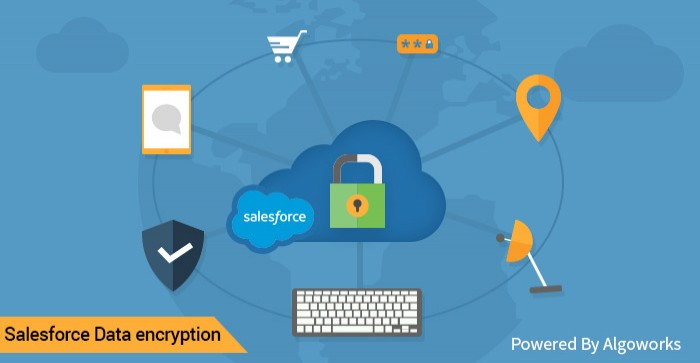 Salesforce Security - An Encryption Guide For The Paranoid - Algoworks