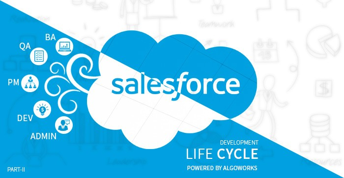 All You Need to Know About Salesforce Development Lifecycle