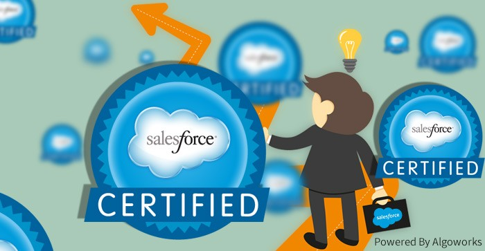 How to Select a Certified Salesforce Consultant?