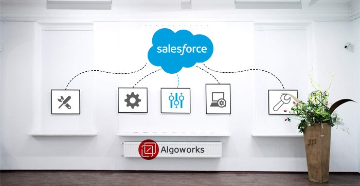 Top Reasons Why to go for Salesforce Customization