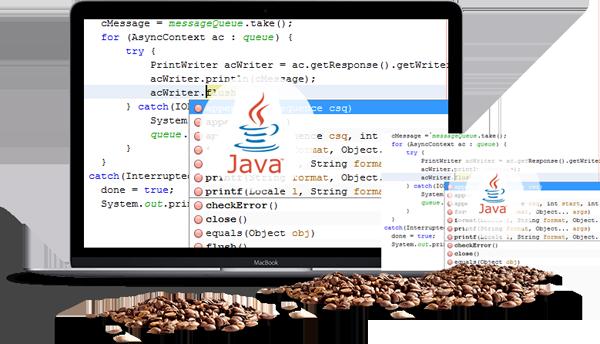 Java Web Application Developers