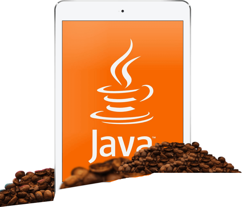 Hire Java J2EE Developers