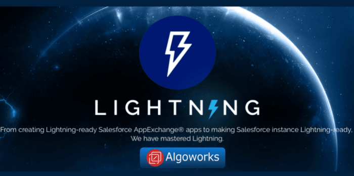 Salesforce Lightning Consultaning and Development Company