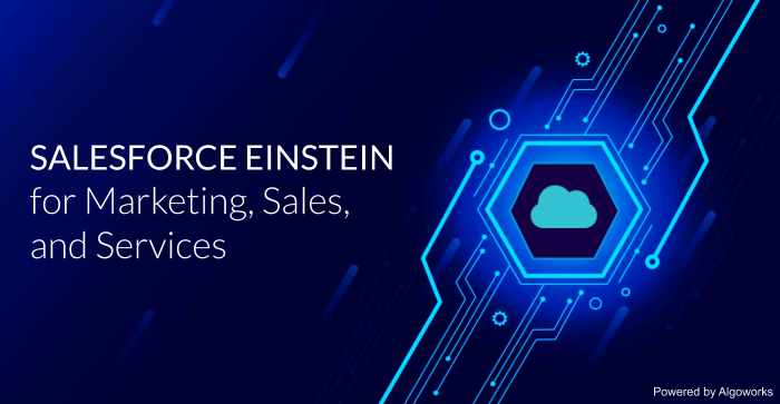 The Role of Salesforce Einstein in Marketing, Sales, and Services