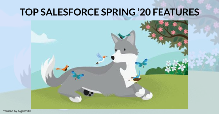 Five Exciting Salesforce Spring '20 Features