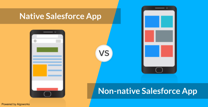 Native vs Non-native Salesforce App: Which One is Better?