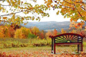 bench at light on a hillretreat center