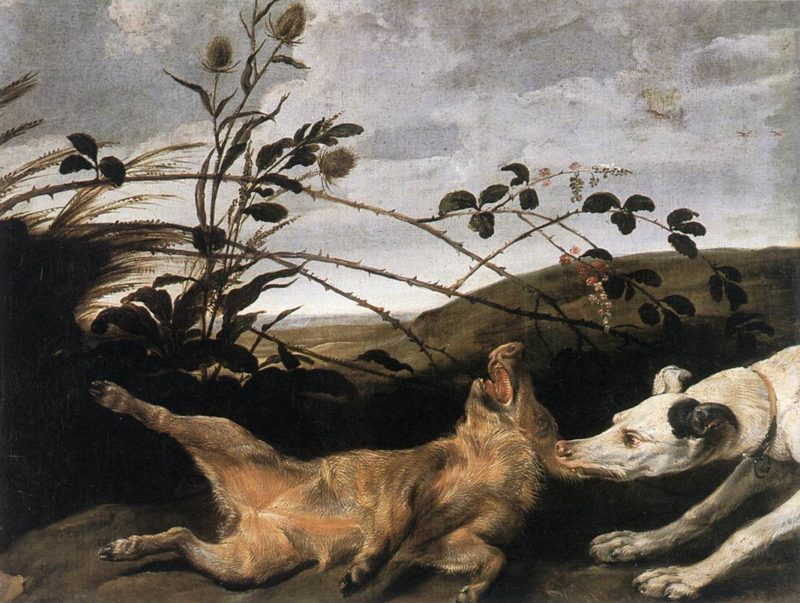 Greyhound Catching A Young Wild Boar | Frans Snyders | Oil Painting