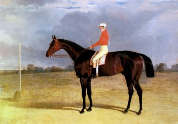 A Dark Bay Racehorse With Patrick Connolly Up | John Frederick Snr Herring | Oil Painting