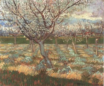 Apricot Trees in Blossom version 2 | Vincent Van Gogh | oil painting
