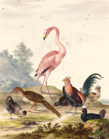 A Flamingo and Exotic Poultry in a Landscape | Johannes van Bronckhorst | oil painting