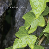 "Read ""Ivy Trio"" reviewed by Nic Jones"