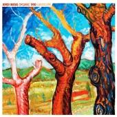 Jordi Matas Organic Trio: Landscape