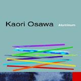 Kaori Osawa: Aluminum