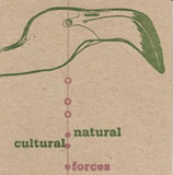 Album Natural/Cultural Forces by Warren Smith