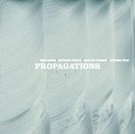 Baron/Denzler/Guiionnet/Rives: Propagations