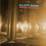 Elliott Sharp: Concert In Dachau
