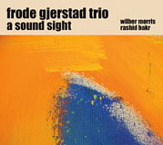 Frode Gjerstad: A Sound Sight