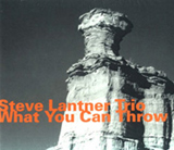 Steve Lantner Trio: What You Can Throw