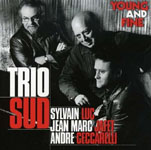 Sylvain Luc / Trio Sud: Young and Fine