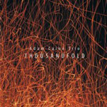 "Read ""Thousandfold"" reviewed by Lyn Horton"