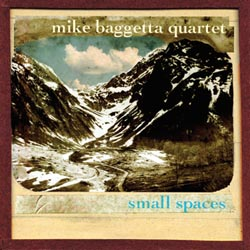 Small Spaces by Mike Baggetta