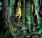 "Read ""David Sylvian: Manafon"" reviewed by John Kelman"