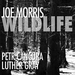 "Read ""Wildlife"" reviewed by"
