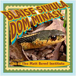 Blaise Siwula and Dom Minasi: Live at The Matt Bevel Institute