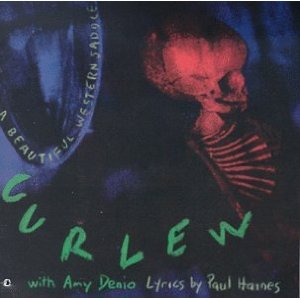 "Read ""Rag, Saddle and All: Curlew and George Cartwright / Davu Seru"" reviewed by Clifford Allen"