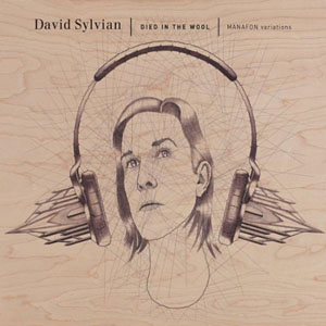 Album David Sylvian: Died In The Wool - Manafon Variations by David Sylvian