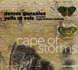 "Read ""Cape of Storms"" reviewed by Glenn Astarita"