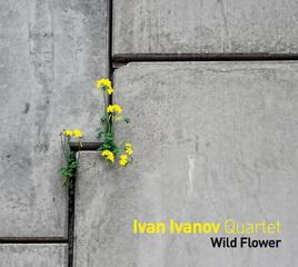 Ivan Ivanov Quartet: Wild Flower