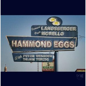 "Read ""Hammond Eggs"" reviewed by Edward Blanco"