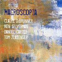 DeBrunner / Silverman / Carter / Zlabinger: Macroscopia