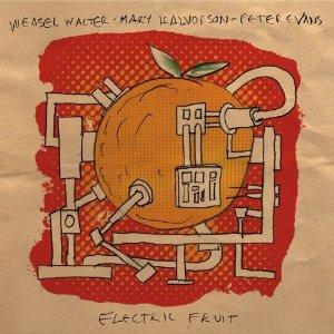 Weasel Walter/ Mary Halvorson/ Peter Evans: Electric Fruit