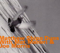 "Read ""Duos With Mat Maneri & Joe Morris"" reviewed by Raul d'Gama Rose"