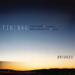Mike Baggetta: Bridges