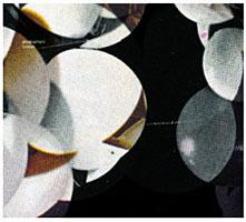 Phonophani: Kreken