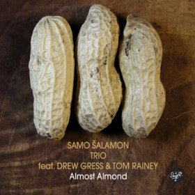 Samo Salamon Trio: Almost Almond
