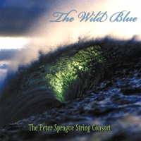 Album The Peter Sprague String Consort: The Wild Blue by Peter Sprague