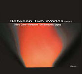 Thierry Gomar: Between Two Worlds: Opus II