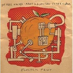 Weasel Walter / Mary Halvorson / Peter Evans: Electric Fruit