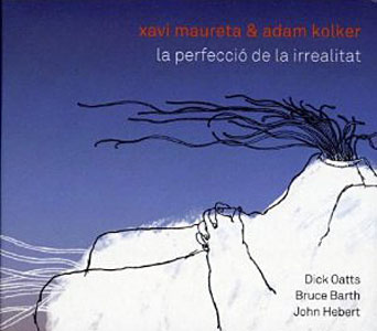 "Read ""La Perfeccio de la Irrealitat"" reviewed by"
