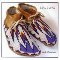 Album Bead Songs by Andy Wasserman