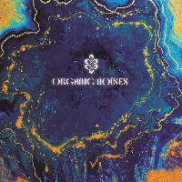 Album Organic Noises by Organic Noises