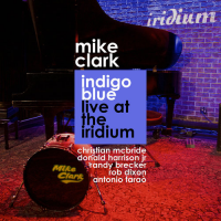 Album Indigo Blue Live at the Iridium by Mike Clark