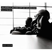 The uppercut | Matthew Shipp Mat Walerian Duo