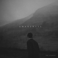 Album Awareness by Joe Sturges