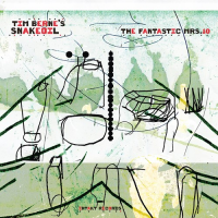 Album The Fantastic Mrs. 10 by Tim Berne